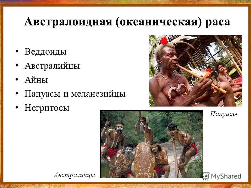 Австралоидная (океаническая) раса Веддоиды Австралийцы Айны Папуасы и меланезийцы Негритосы Папуасы Австралийцы