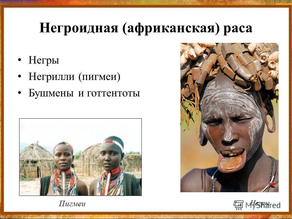 Негроидная (африканская) раса Негры Негрилли (пигмеи) Бушмены и готтентоты Негры Пигмеи