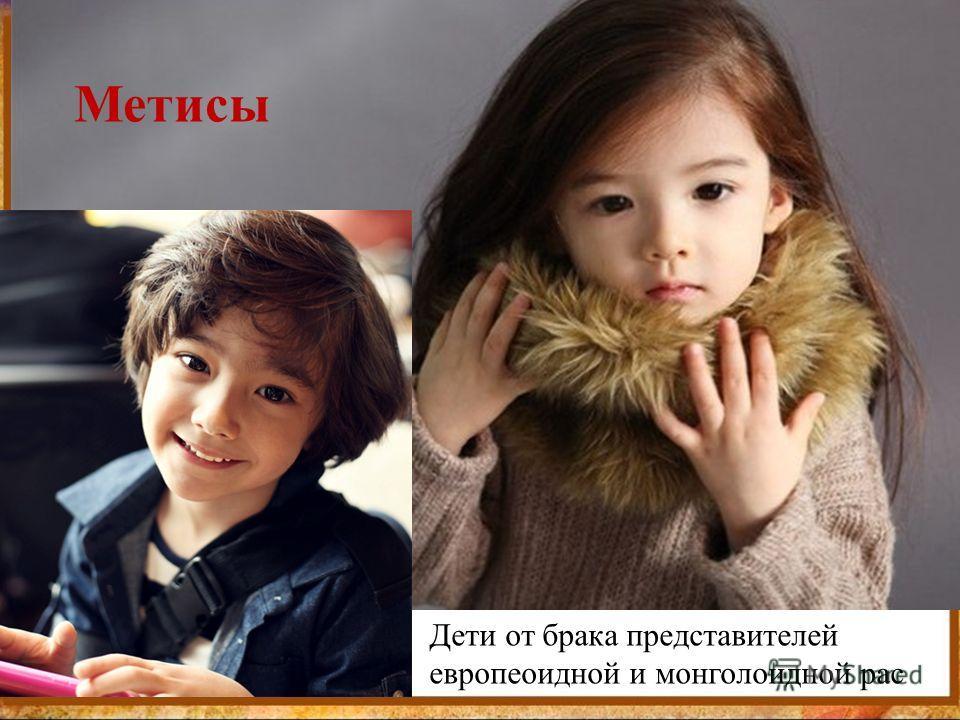Метисы Дети от брака представителей европеоидной и монголоидной рас