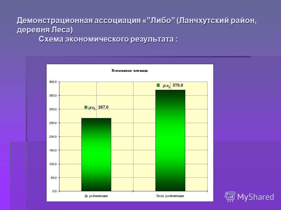 Демонстрационная ассоциация «Либо (Ланчхутский район, деревня Леса) Схема экономического результата :