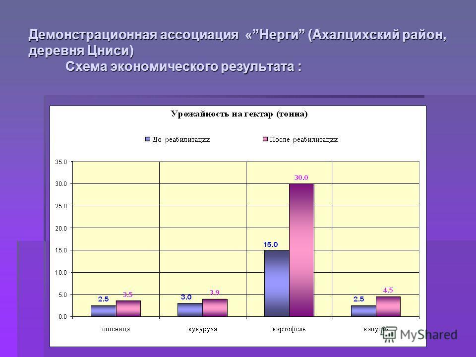 Демонстрационная ассоциация «Нерги (Ахалцихский район, деревня Цниси) Схема экономического результата :