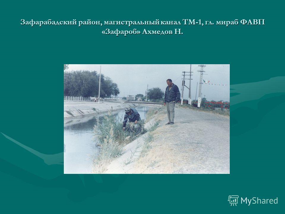Зафарабадский район, магистральный канал ТМ-1, гл. мираб ФАВП «Зафароб» Ахмедов Н.