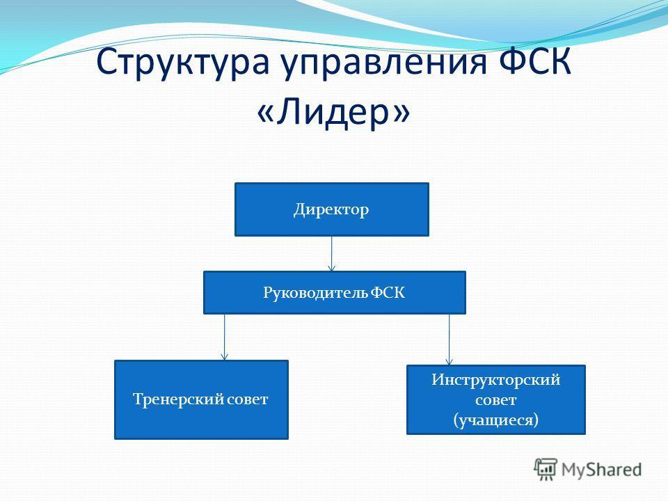 Структура управления ФСК «Лидер» Директор Руководитель ФСК Тренерский совет Инструкторский совет (учащиеся)