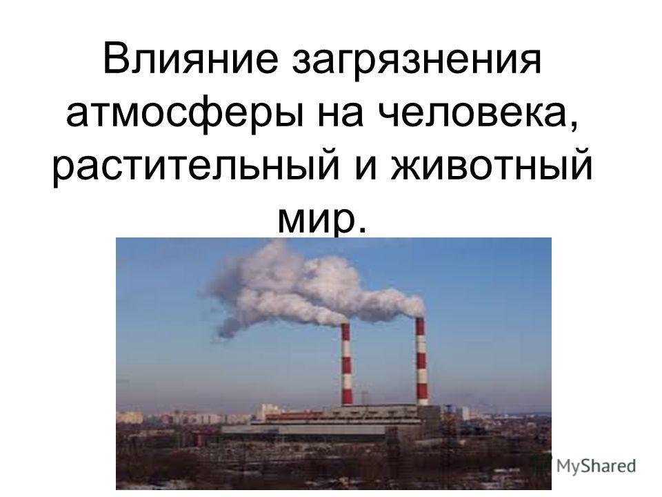 Влияние загрязнения атмосферы на человека, растительный и животный мир.