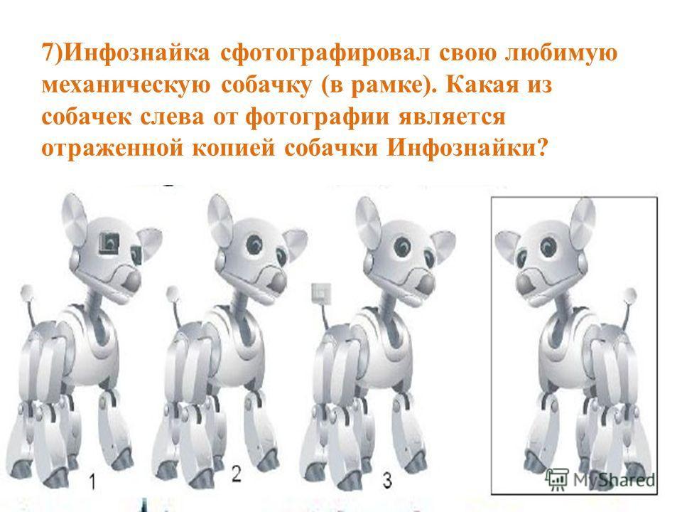7)Инфознайка сфотографировал свою любимую механическую собачку (в рамке). Какая из собачек слева от фотографии является отраженной копией собачки Инфознайки?