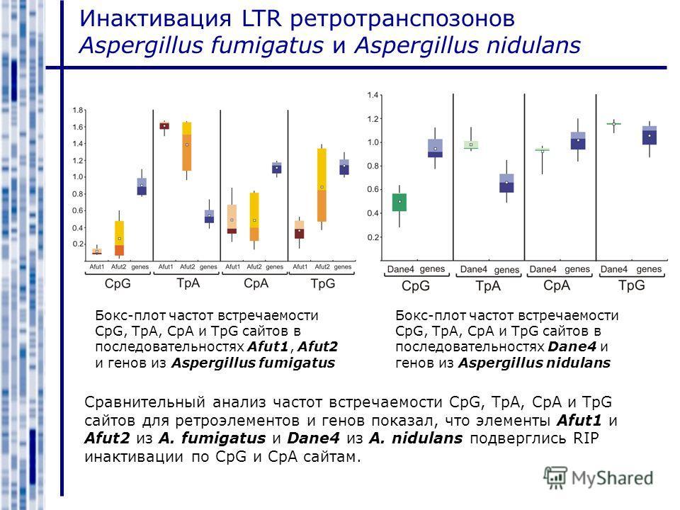 Инактивация LTR ретротранспозонов Aspergillus fumigatus и Aspergillus nidulans Бокс-плот частот встречаемости CpG, TpA, CpA и TpG сайтов в последовательностях Afut1, Afut2 и генов из Aspergillus fumigatus Бокс-плот частот встречаемости CpG, TpA, CpA