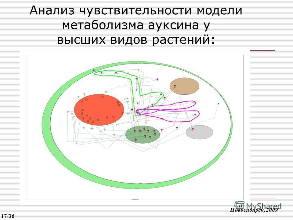 Анализ чувствительности модели метаболизма ауксина у высших видов растений: Новосибирск, 2009 17/36
