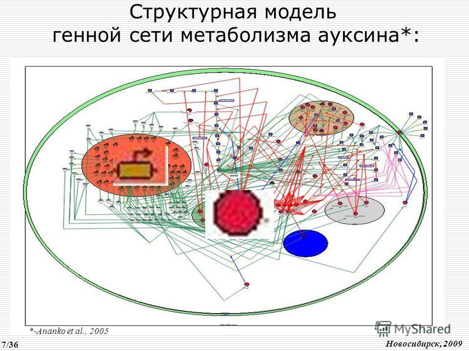 Структурная модель генной сети метаболизма ауксина*: *-Ananko et al., 2005 Новосибирск, 2009 7/36