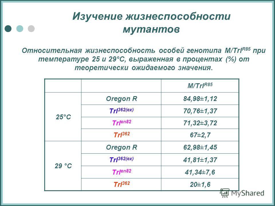 Изучение жизнеспособности мутантов Относительная жизнеспособность особей генотипа M/Trl R85 при температуре 25 и 29°С, выраженная в процентах (%) от теоретически ожидаемого значения. M/Trl R85 25°С Oregon R84,98±1,12 Trl 362(ex) 70,76±1,37 Trl en82 7