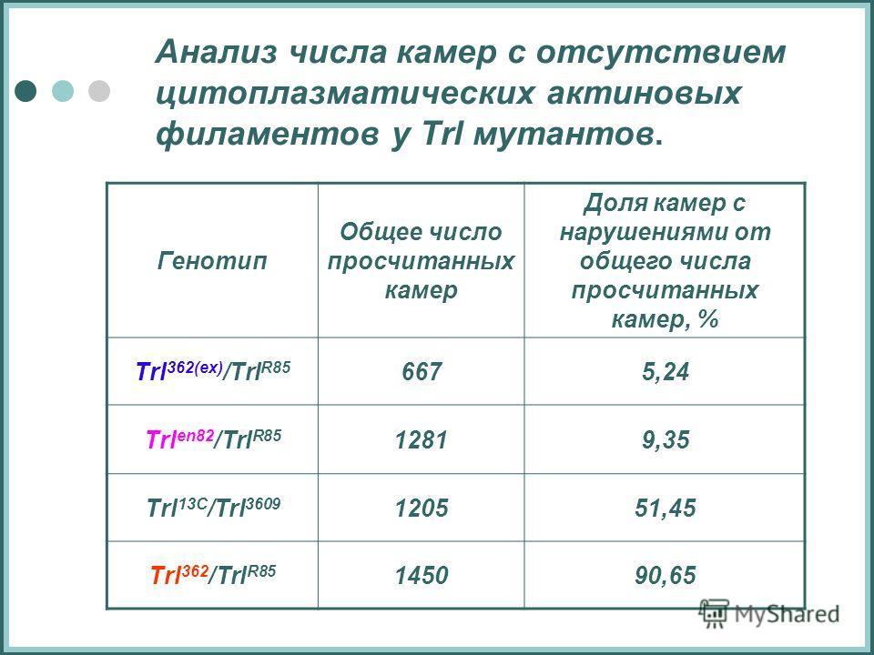 Анализ числа камер с отсутствием цитоплазматических актиновых филаментов у Trl мутантов. Генотип Общее число просчитанных камер Доля камер с нарушениями от общего числа просчитанных камер, % Тrl 362(ex) /Тrl R85 6675,24 Тrl en82 /Тrl R85 12819,35 Trl