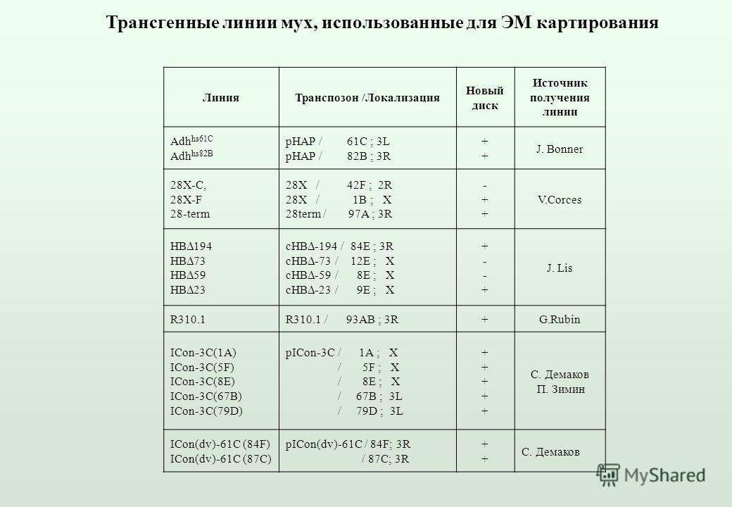 Трансгенные линии мух, использованные для ЭМ картирования ЛинияТранспозон /Локализация Новый диск Источник получения линии Adh hs61C Adh hs82B pHAP / 61С ; 3L pHAP / 82B ; 3R ++++ J. Bonner 28X-C, 28X-F 28-term 28X / 42F ; 2R 28X / 1B ; Х 28term / 97