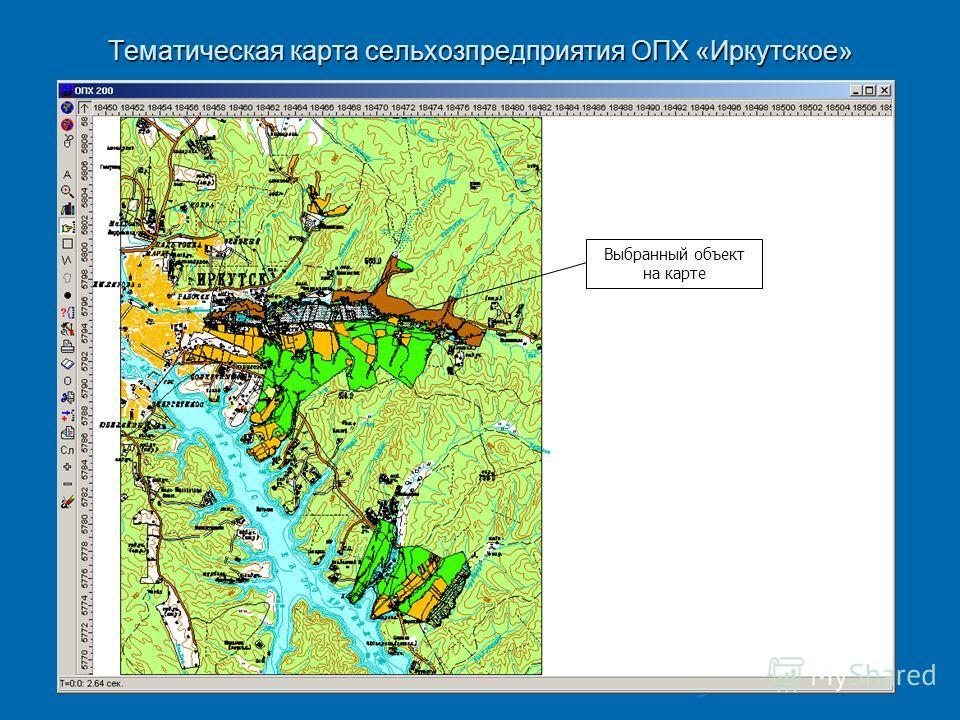 Тематическая карта сельхозпредприятия ОПХ «Иркутское» Выбранный объект на карте