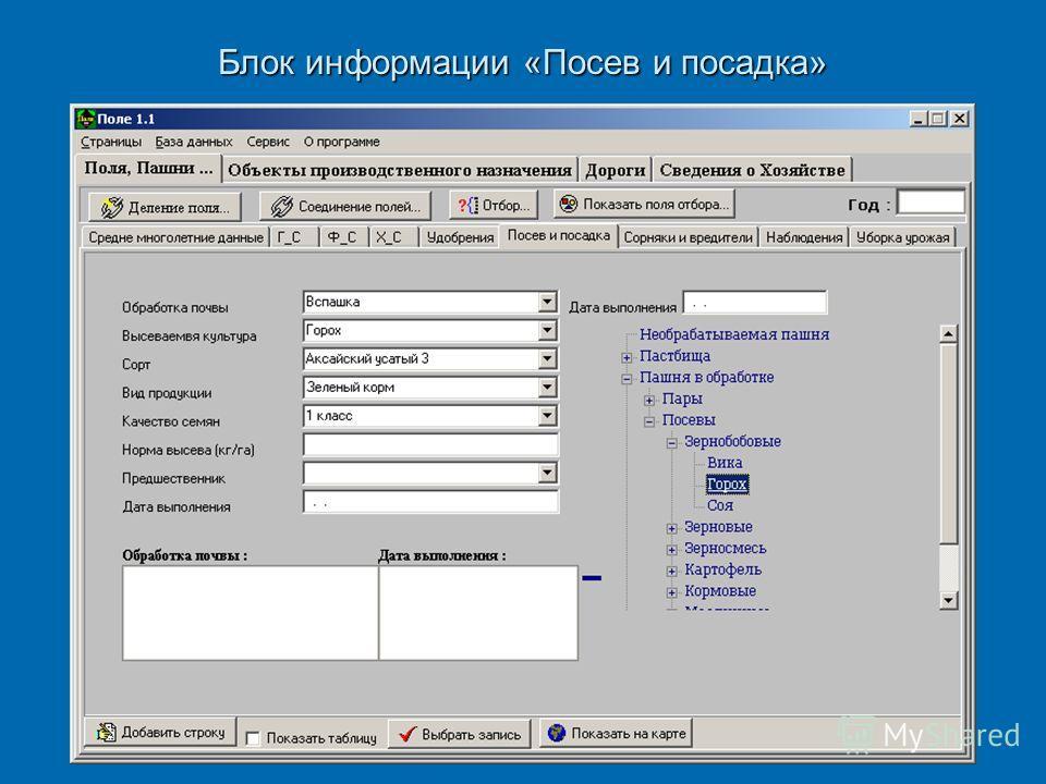 Блок информации «Посев и посадка»
