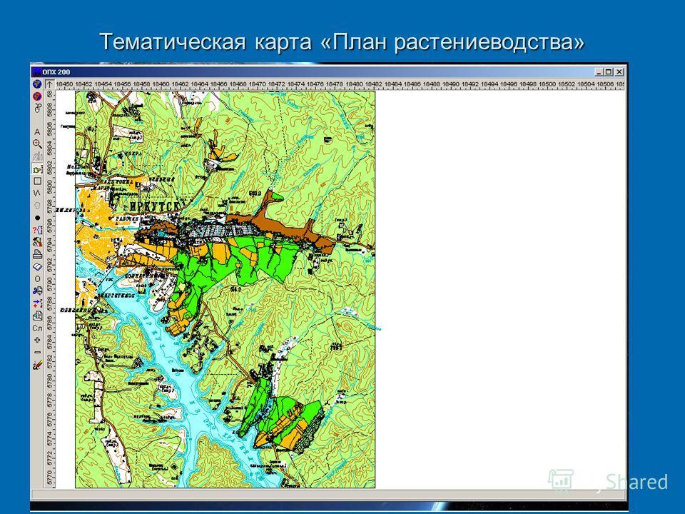 Тематическая карта «План растениеводства»