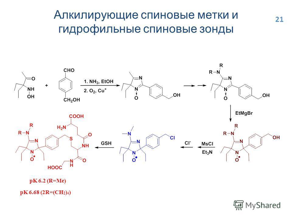 Алкилирующие спиновые метки и гидрофильные спиновые зонды pK 6.68 (2R=(CH 2 ) 4 ) pK 6.2 (R=Me) 21