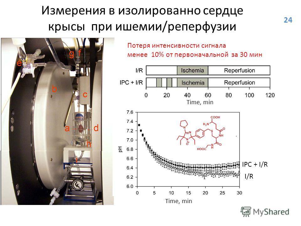 Измерения в изолированно сердце крысы при ишемии/реперфузии Time, min Потеря интенсивности сигнала менее 10% от первоначальной за 30 мин Time, min IPC + I/R I/R 24