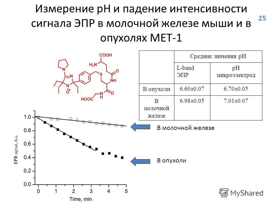 Измерение рН и падение интенсивности сигнала ЭПР в молочной железе мыши и в опухолях MET-1 Средние значения рН L-band ЭПР pH микроэлектрод В опухоли6.60±0.076.70±0.05 В молочной железе 6.98±0.057.01±0.07 EPR signal, A.u. В молочной железе В опухоли 2