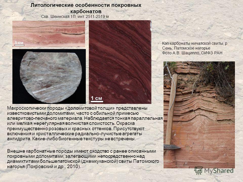 Литологические особенности покровных карбонатов Макроскопически породы «доломитовой толщи» представлены известковистыми доломитами, часто с обильной примесью алевритово-песчаного материала. Наблюдается тонкая параллельная или мелкая нерегулярная волн