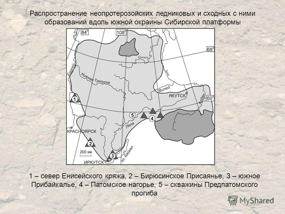 Распространение неопротерозойских ледниковых и сходных с ними образований вдоль южной окраины Сибирской платформы 1 – север Енисейского кряжа, 2 – Бирюсинское Присаянье, 3 – южное Прибайкалье, 4 – Патомское нагорье, 5 – скважины Предпатомского прогиб
