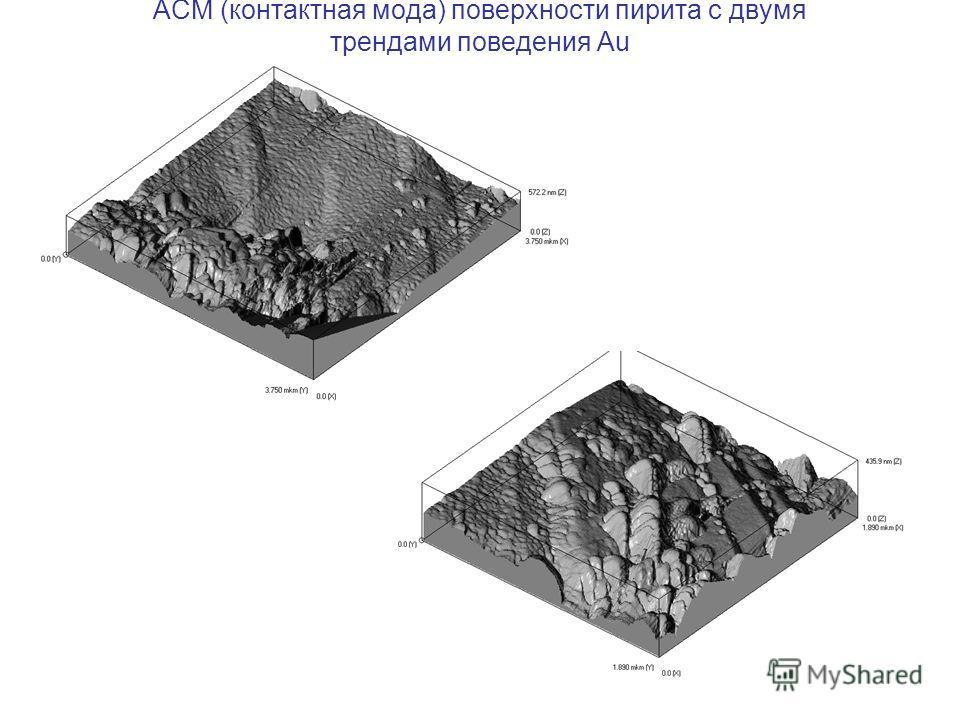 АСМ (контактная мода) поверхности пирита с двумя трендами поведения Au