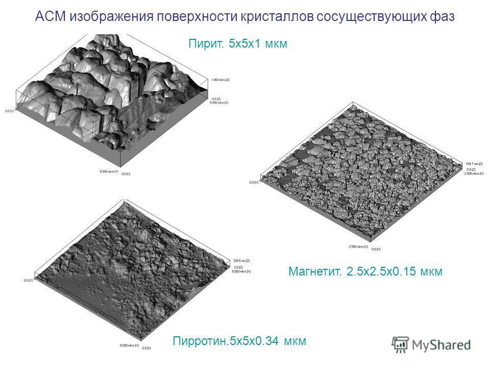 АСМ изображения поверхности кристаллов сосуществующих фаз Пирит. 5х5х1 мкм Пирротин.5х5х0.34 мкм Магнетит. 2.5х2.5х0.15 мкм