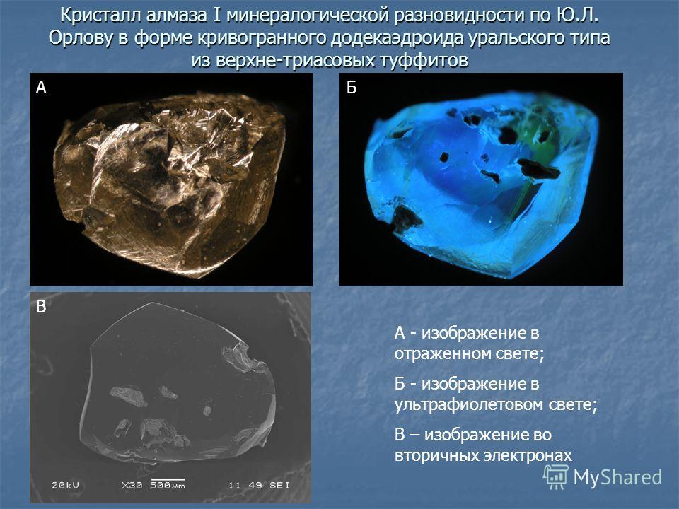 Кристалл алмаза I минералогической разновидности по Ю.Л. Орлову в форме кривогранного додекаэдроида уральского типа из верхне-триасовых туффитов А - изображение в отраженном свете; Б - изображение в ультрафиолетовом свете; В – изображение во вторичны