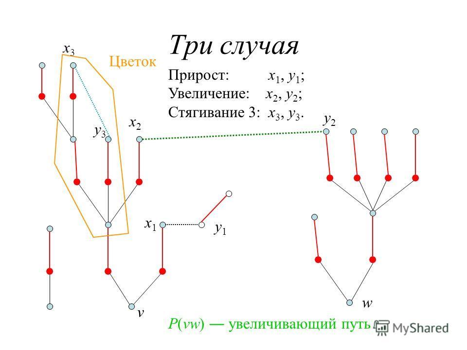 Три случая Прирост: x 1, y 1 ; Увеличение: x 2, y 2 ; Стягивание 3: x 3, y 3. x1x1 y1y1 x2x2 y2y2 x3x3 y3y3 Цветок v w P(vw) увеличивающий путь