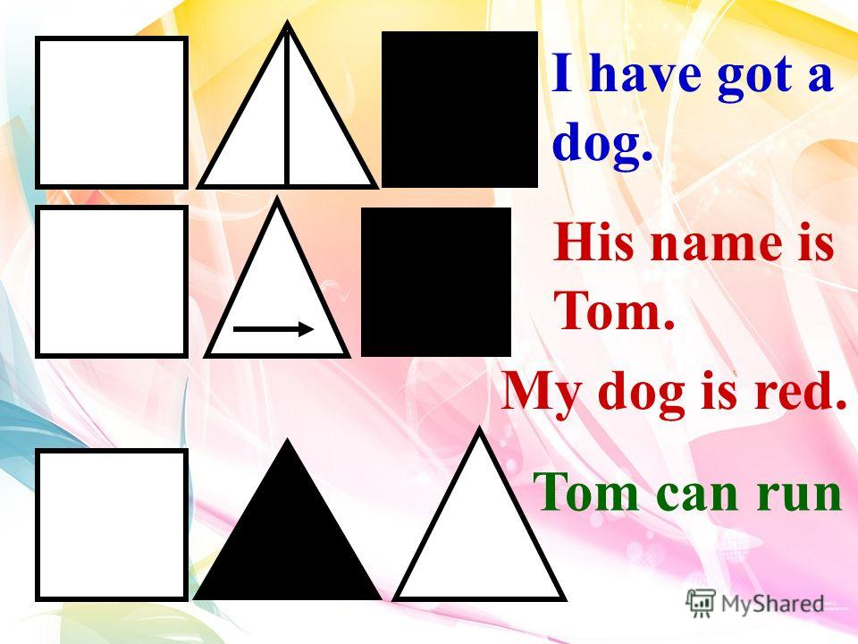 His name is Tom. I have got a dog. Tom can run My dog is red.