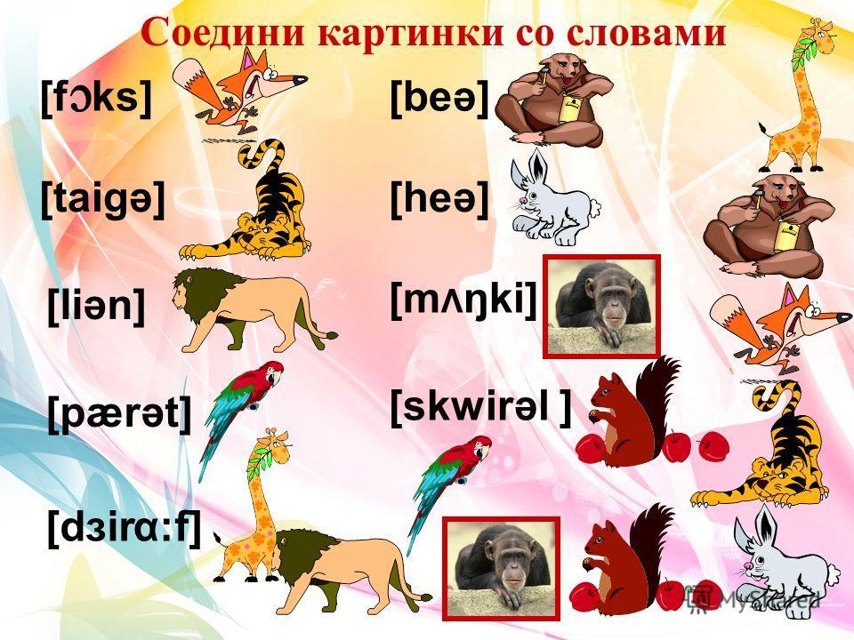 Соедини картинки со словами [f ks] [taigә] [liәn] [pærәt] [dзir :f] α [beә] [heә] [m Λ ŋki] [skwirәl ]
