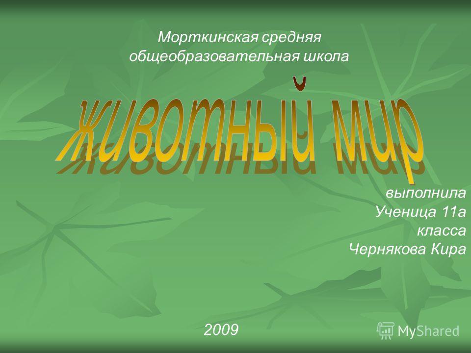 Морткинская средняя общеобразовательная школа выполнила Ученица 11а класса Чернякова Кира 2009