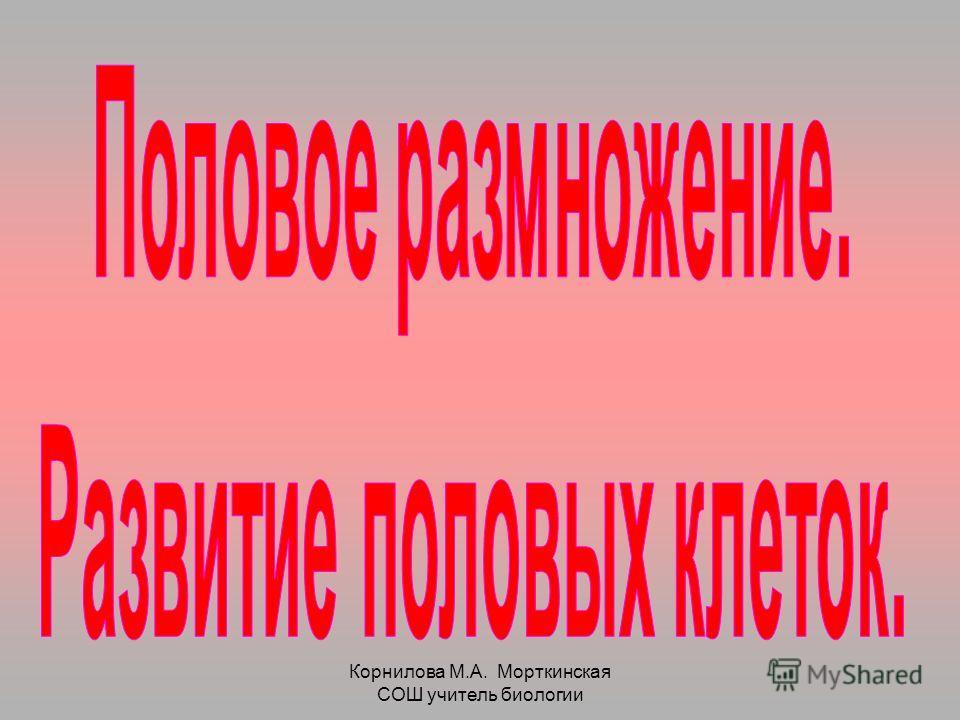 Корнилова М.А. Морткинская СОШ учитель биологии