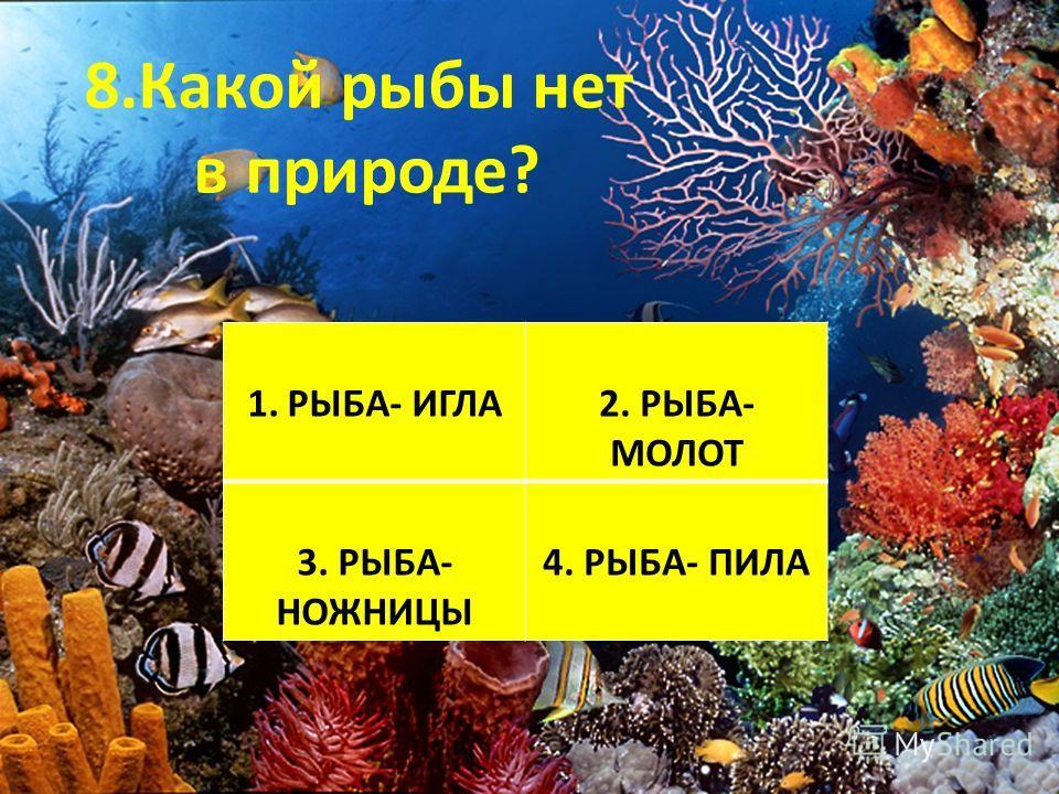 8.Какой рыбы нет в природе? 1. Ромашка 2. Одуванчик 3. Колокольчик 4. Василёк 1.РЫБА- ИГЛА2. РЫБА- МОЛОТ 3. РЫБА- НОЖНИЦЫ 4. РЫБА- ПИЛА