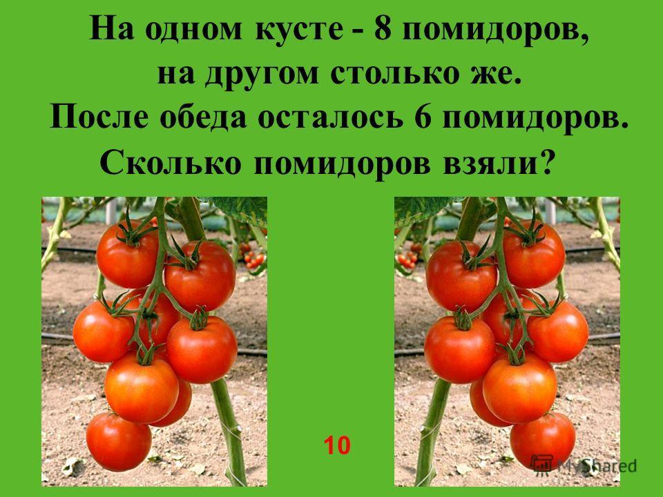 На одном кусте - 8 помидоров, на другом столько же. После обеда осталось 6 помидоров. Сколько помидоров взяли? 10