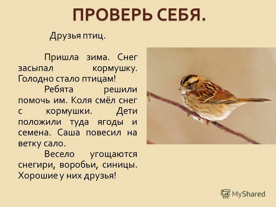 ПРОВЕРЬ СЕБЯ. Друзья птиц. Пришла зима. Снег засыпал кормушку. Голодно стало птицам ! Ребята решили помочь им. Коля смёл снег с кормушки. Дети положили туда ягоды и семена. Саша повесил на ветку сало. Весело угощаются снегири, воробьи, синицы. Хороши