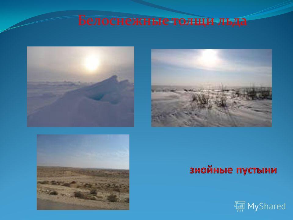 Белоснежные толщи льда