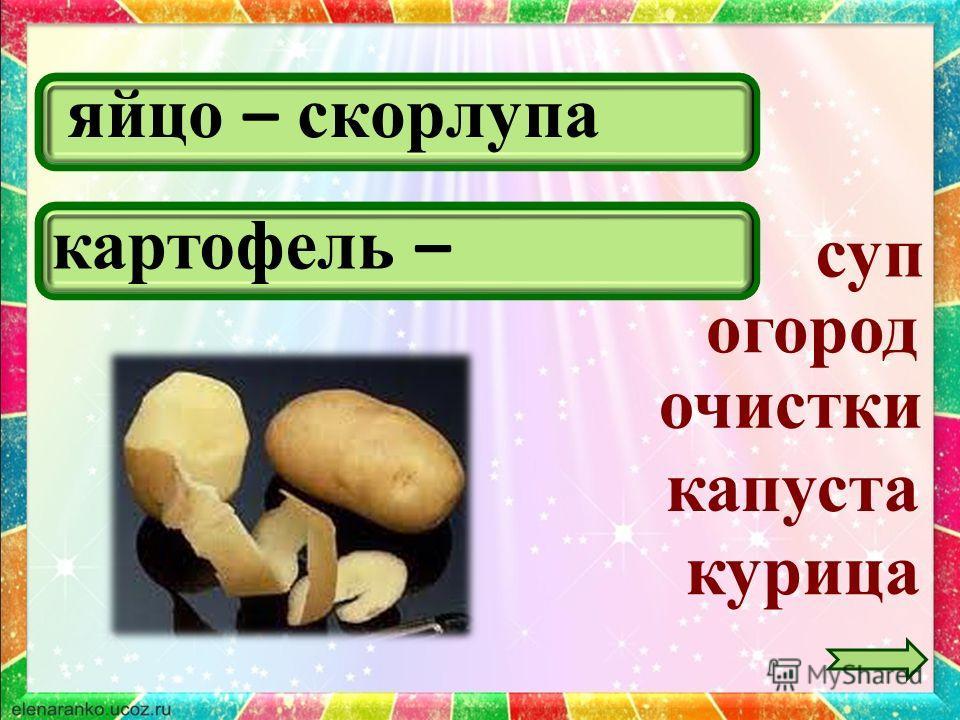 яйцо – скорлупа курица суп огород картофель – очистки капуста