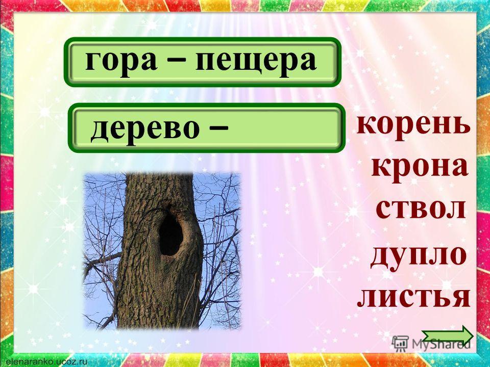 гора – пещера крона листья ствол дерево – дупло корень