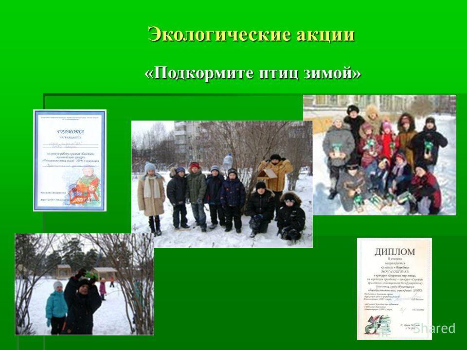 Экологические акции Экологические акции «Подкормите птиц зимой»