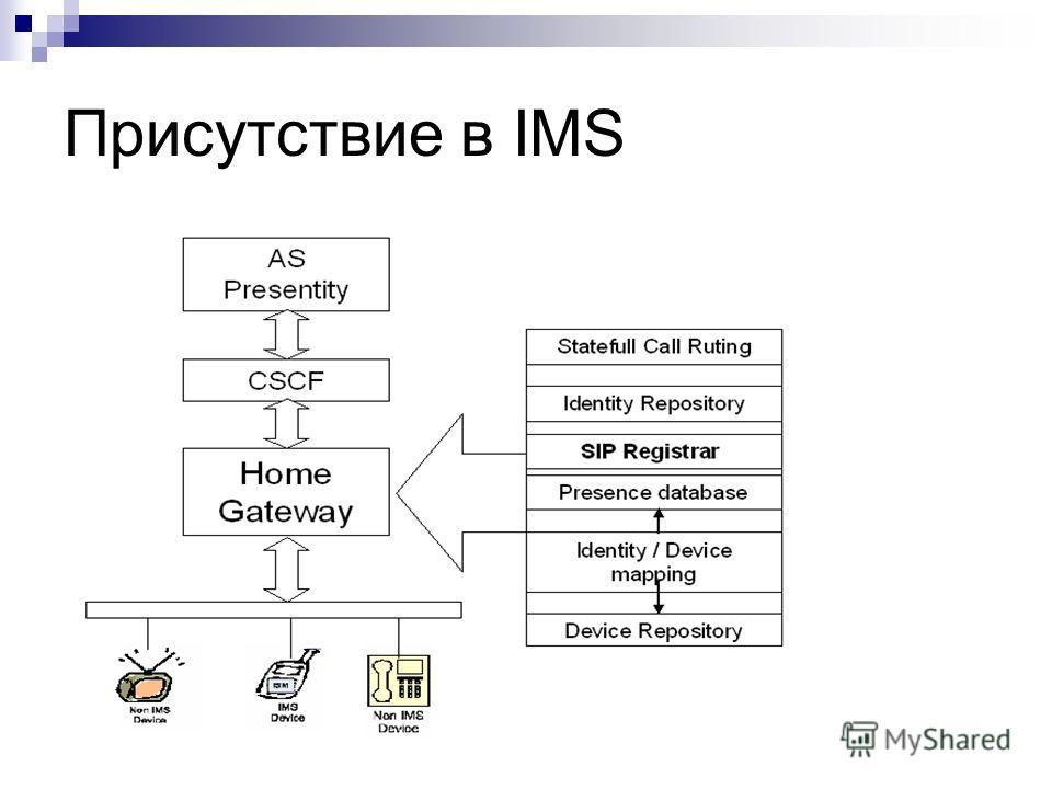 Присутствие в IMS