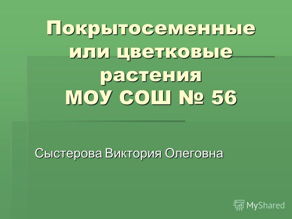 Покрытосеменные или цветковые растения МОУ СОШ 56 Сыстерова Виктория Олеговна