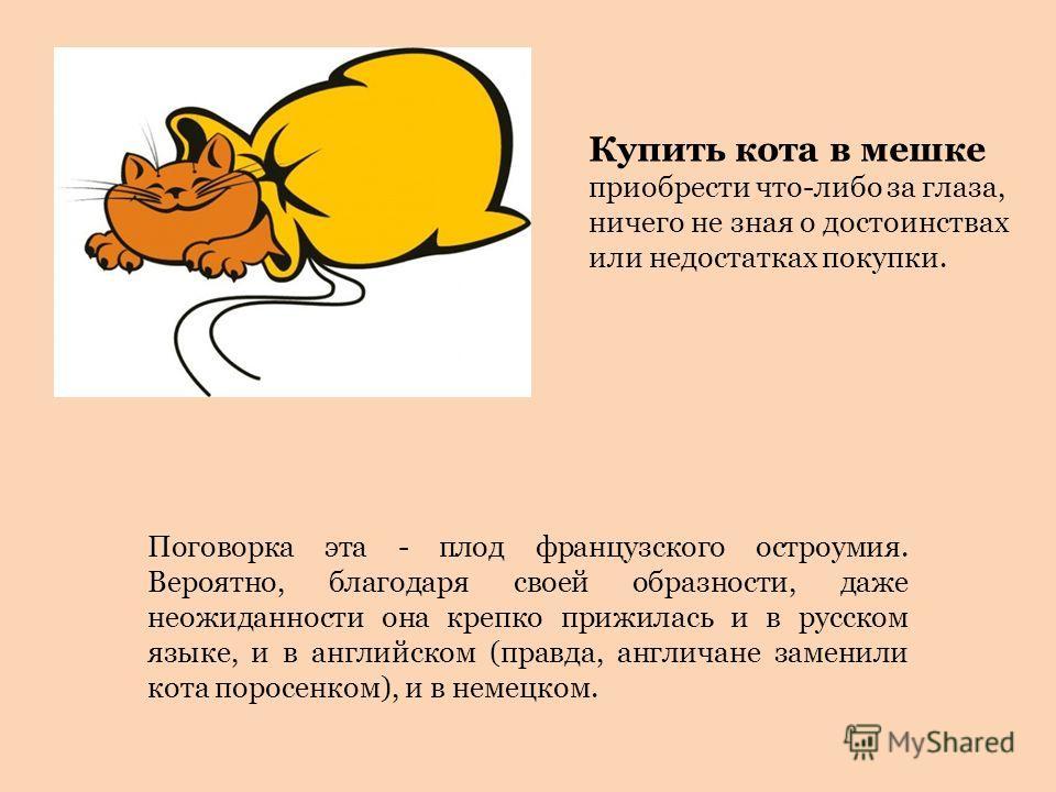 Поговорка эта - плод французского остроумия. Вероятно, благодаря своей образности, даже неожиданности она крепко прижилась и в русском языке, и в английском (правда, англичане заменили кота поросенком), и в немецком. Купить кота в мешке приобрести чт