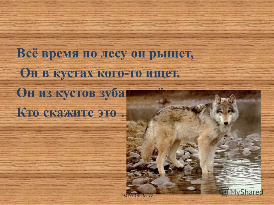 Всё время по лесу он рыщет, Он в кустах кого-то ищет. Он из кустов зубами щёлк, Кто скажите это … ГБОУ СОШ 72