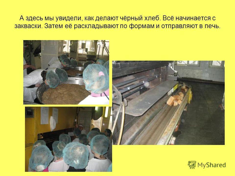 А здесь мы увидели, как делают чёрный хлеб. Всё начинается с закваски. Затем её раскладывают по формам и отправляют в печь.