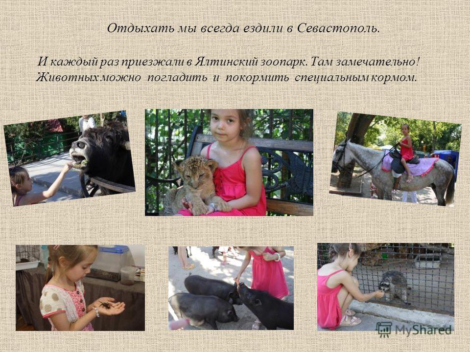 Отдыхать мы всегда ездили в Севастополь. И каждый раз приезжали в Ялтинский зоопарк. Там замечательно! Животных можно погладить и покормить специальным кормом.