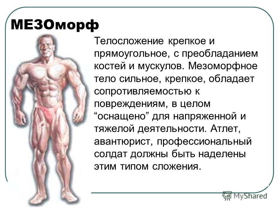 Мезоморфный фото