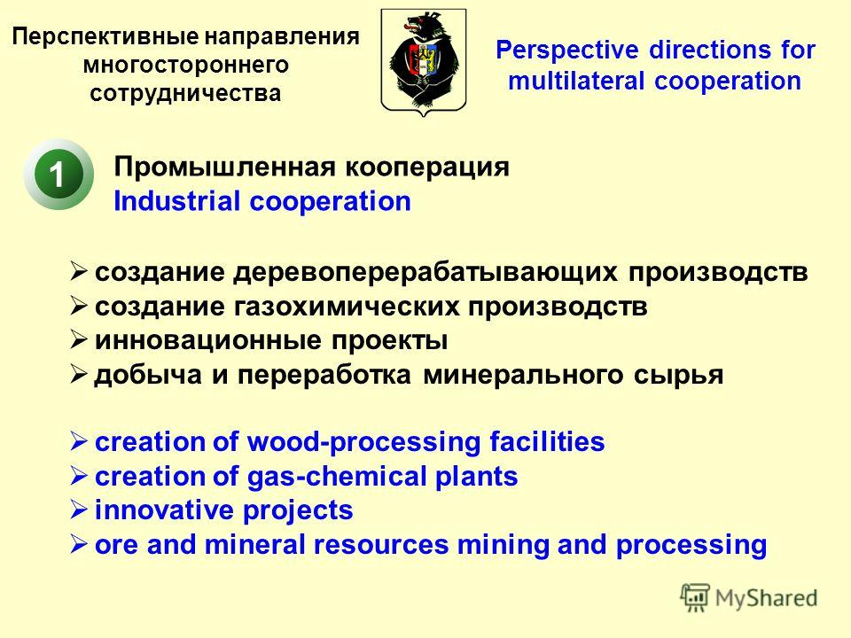 Перспективные направления многостороннего сотрудничества создание деревоперерабатывающих производств создание газохимических производств инновационные проекты добыча и переработка минерального сырья creation of wood-processing facilities creation of