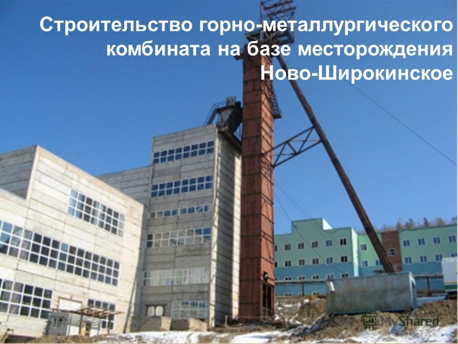 Строительство горно-металлургического комбината на базе месторождения Ново-Широкинское