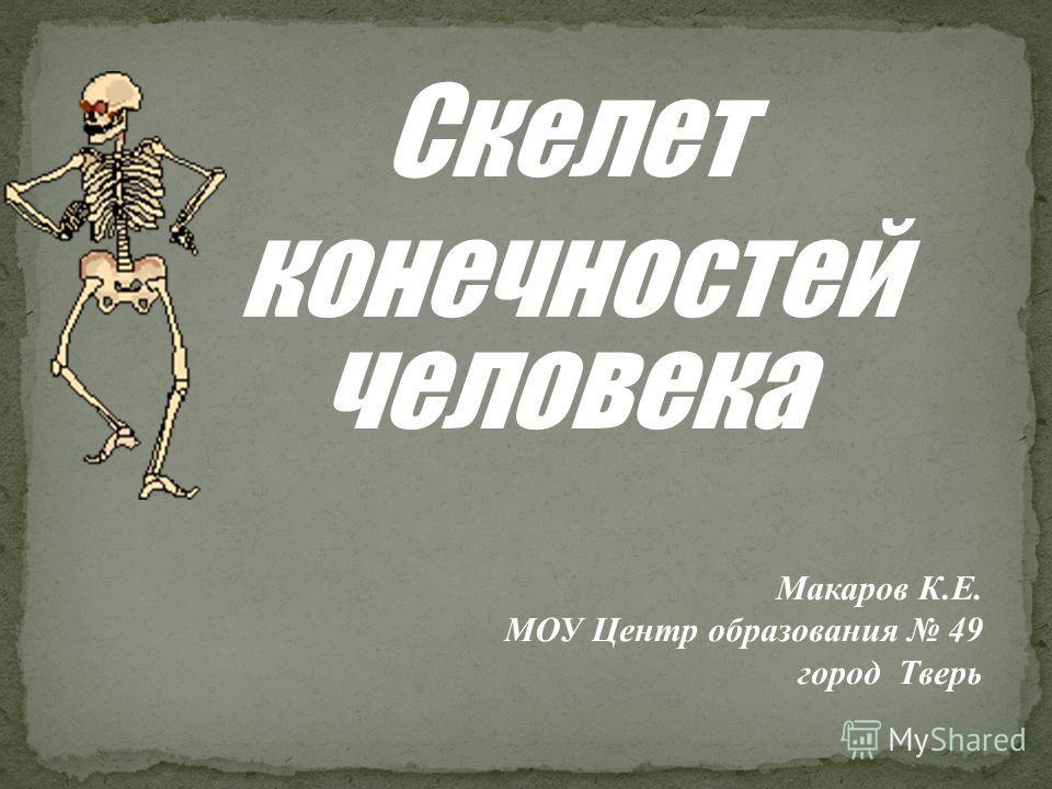 Скелет конечностей человека Макаров К.Е. МОУ Центр образования 49 город Тверь