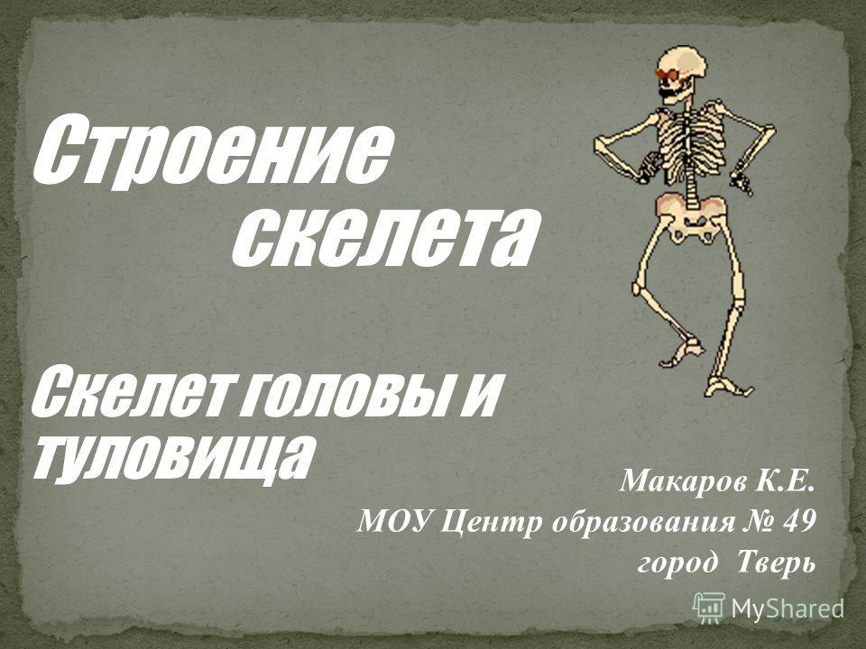 Строение скелета Скелет головы и туловища Макаров К.Е. МОУ Центр образования 49 город Тверь