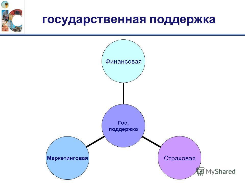 государственная поддержка Гос. поддержка ФинансоваяСтраховаяМаркетинговая